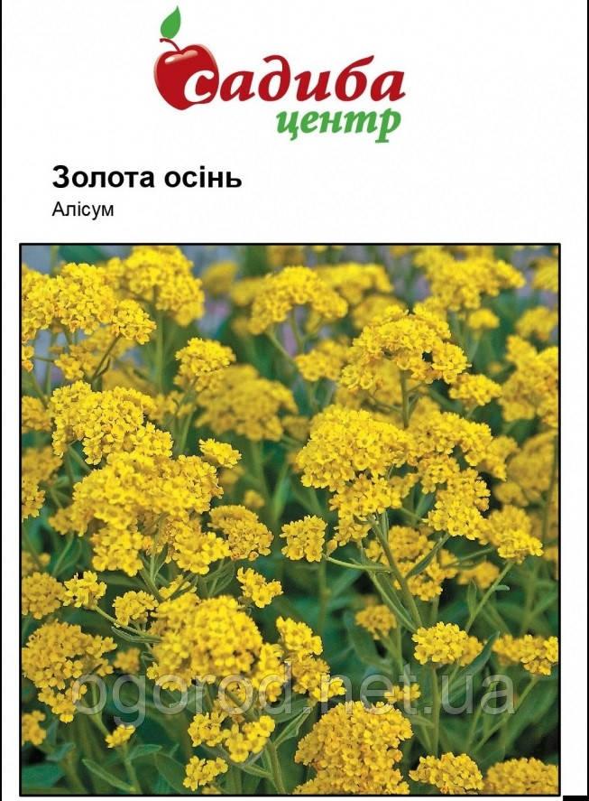 Алиссум Золотая Осень Hem Zaden Голландия 0,2 грамма