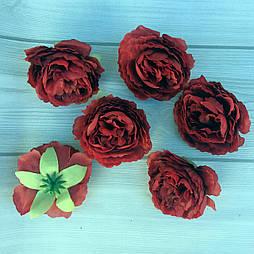 Пионовидная роза 8 см марсал (10 шт в уп)