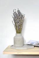 """Лаванда в вазе из бетона """"Nordic"""""""