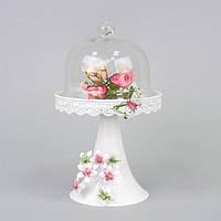 Декоративная цветочная композиция в вазе с колпаком для интерьера Cussonia цветочный декор, цветы под колпаком