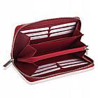 Жіночий шкіряний гаманець Betlewski з RFID 19,5 х 10 х 2,5 (BPD-SS-21) - червоний, фото 4