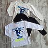 Оптом Дитячий Тонкий Реглан Хлопчики 5-8 років Туреччина, фото 3