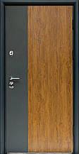 Входные двери коллекция Статус S-3 дуб золото+графит