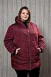Куртка жіноча плащівка для повних, бордова, фото 3