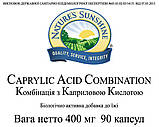 Caprylic Acid Combination Комплекс з Каприлової Кислотою, НСП, NSP, США Нормалізує мікробіоценоз кишечника, фото 3