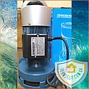 Бытовой наружный вертикальный насос БЦН для полива огорода Poseidon 5-18-0,75, фото 2