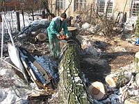 Удаление дерева корчевка пней уборка территории вывоз мусора