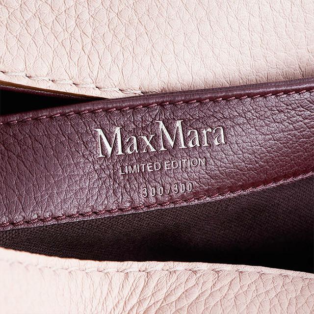 A_bag_max_mara