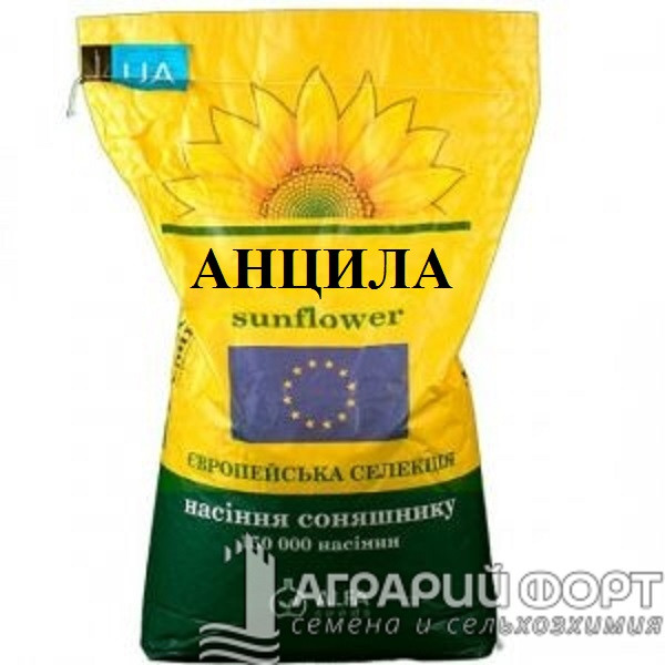 Семена подсолнуха Анцилла / Насіння соняшнику Анцилла Альфа Насіння