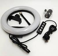 Кольцевая LED селфи лампа диаметр 20 см. Белый