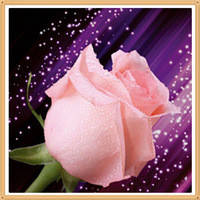 """Набор алмазной вышивки (мозаики) """"Розовая роза"""""""