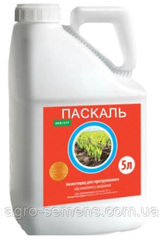 Паскаль протравитель 5 л Укравит