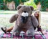 Плюшевый Мишка Вэтли 130 см, фото 7