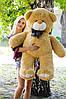 Плюшевый Мишка Вэтли 130 см, фото 9
