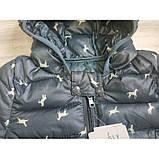 Демисезонная курточка мальчику серая Рост:120 см, фото 2