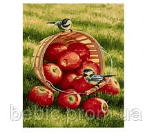"Картина по номерам ""Хрустящие яблочки"" 40х50 см"