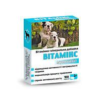 Витамикс 12 для собак мультивит №100 Круг