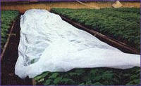 Агроволокно спанбонд Premium-agro (Польша) 8,5/100 30 г/м2, фото 1
