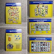 Комплект картонных плакатов по Биологии