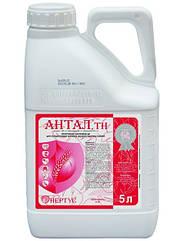 АНТАЛ - протравитель зерна для защиты семян и всходов от болезней и вредителей  Нертус/Nertus