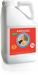 Протравитель Кариолис аналог Максим XL - фунгицидный протравитель для обработки семян Каріоліс