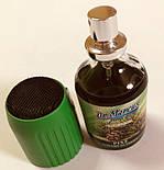 Освіжувач повітря сосна car@home спрей  Dr Marcus Pump Spray Pine, фото 2