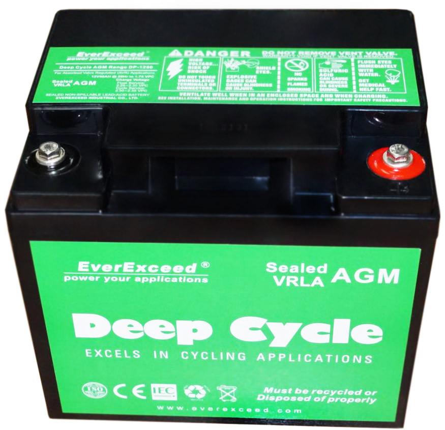 Аккумулятор EverExceed DP-1255