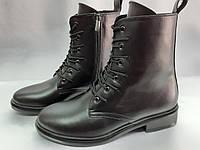 Демисезонные кожаные классические ботинки на молнии Terra Grande, фото 1