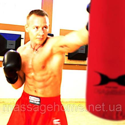 Боксерские перчатки Hammer Premium Fitness 10oz, фото 2
