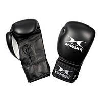 Боксерские перчатки Hammer Premium Fitness 12oz