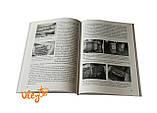 """Книга """"Безвощинные технологии (Дикий мед на вашей пасеке)"""", фото 3"""