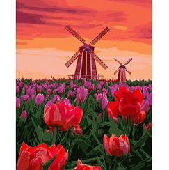 Тюльпаны на закате - Картины по номерам   Идейка™ 40х50 см.   КН2275