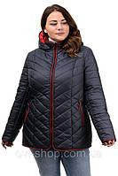 Женская куртка «Лиза» р50-64