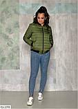 Куртка осень весна    (размеры 48-52) 0254-23, фото 2