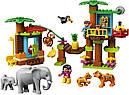 Конструктор LEGO Duplo 10906 Тропический остров, фото 3