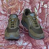 Тактичні кросівки NEWTON нубук койот сітка, фото 3