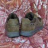 Тактичні кросівки NEWTON нубук койот сітка, фото 6
