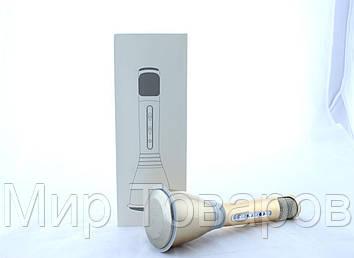 Микрофон DM Karaoke K068  50