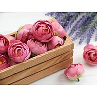 Ранункулюс бутон ,  темно - розовый            100 шт