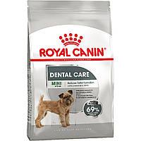 Royal Canin Mini Dental Care 1 кг для собак міні порід