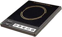 Индукционная плита Saturn ST-EC0189