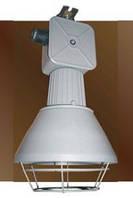 Инфракрасный светильник для обогрева молодняка ССП01В-250-001, металл