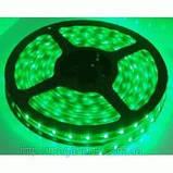 5м лента светодиодная, 300x 3528 SMD LED, зеленая, фото 2