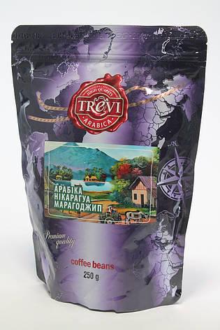 Кофе в зернах Trevi Марагоджип  100% Арабика 250 г, фото 2