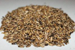Расторопша натуральная семена 1 кг