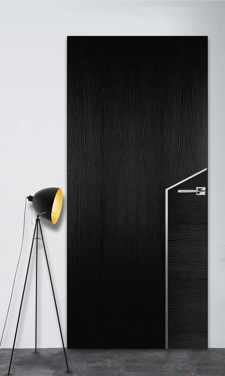 Межкомнатная дверь Флэш 10 черный ясень ПГ (скрытого монтажа)