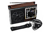 Радиоприемник колонка MP3 Golon RX-9922UAR, фото 4