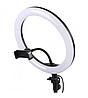 Кільцева LED лампа Ring Light Z1 26 см + штатив і тримач для телефону, фото 3
