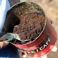 Био-топливо из кофе уже в Британии