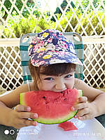 Арбуз   Сахарный малыш